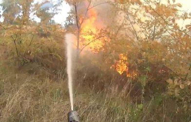 CINTURA SUD – Fioccano gli incendi di sterpaglie: vigili del fuoco impegnati in diverse zone